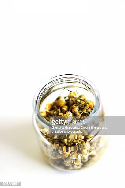 chamomile flowers - gregoria gregoriou crowe fine art and creative photography stock photos and pictures