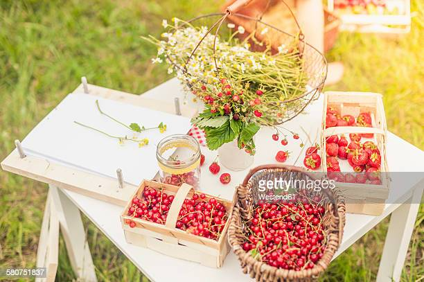 Chamomile flowers, woodland strawberries and red currants on a table