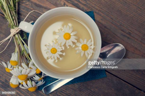 chamomile - chamomile tea stock photos and pictures