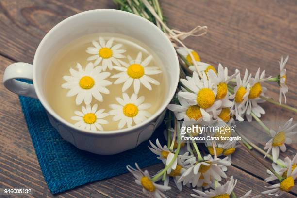 chamomile - herbal tea stock pictures, royalty-free photos & images