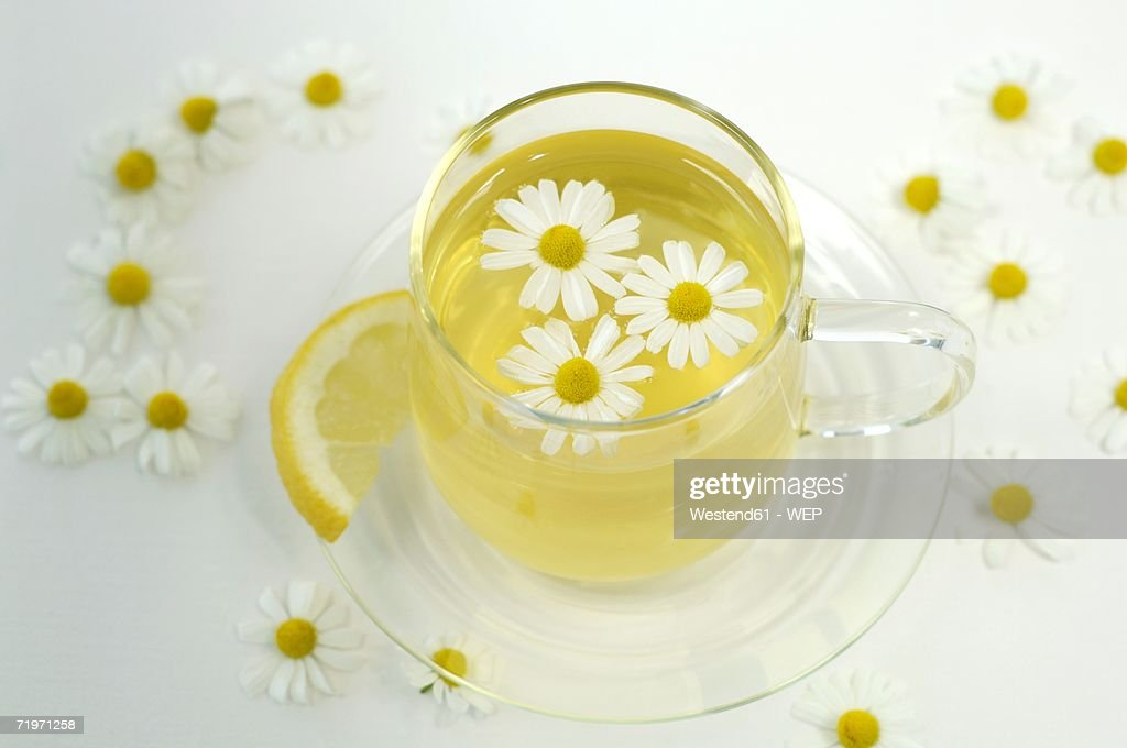 Chamomile tea in cup with flowers and lemon, close-up : Stock Photo
