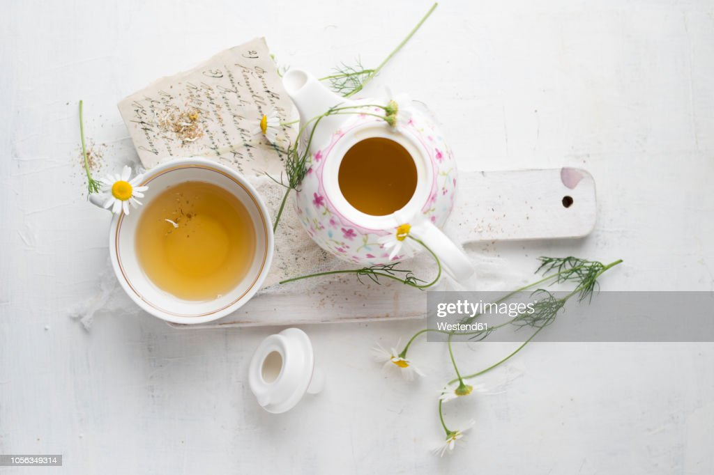 Chamomile tea in pot and cup : Stock Photo