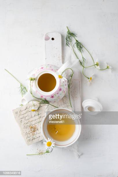 chamomile tea in pot and cup - chamomile tea stock photos and pictures