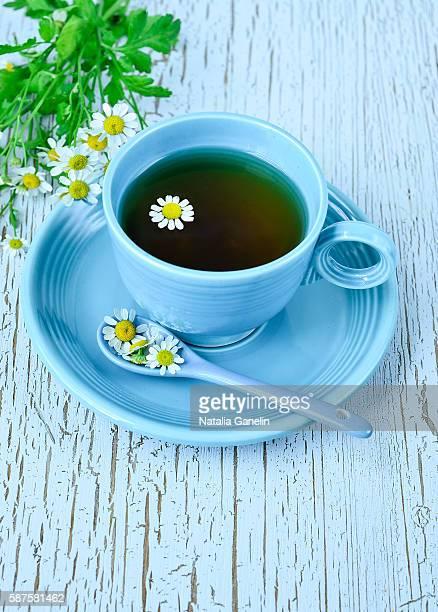 chamomile tea - chamomile tea stock photos and pictures