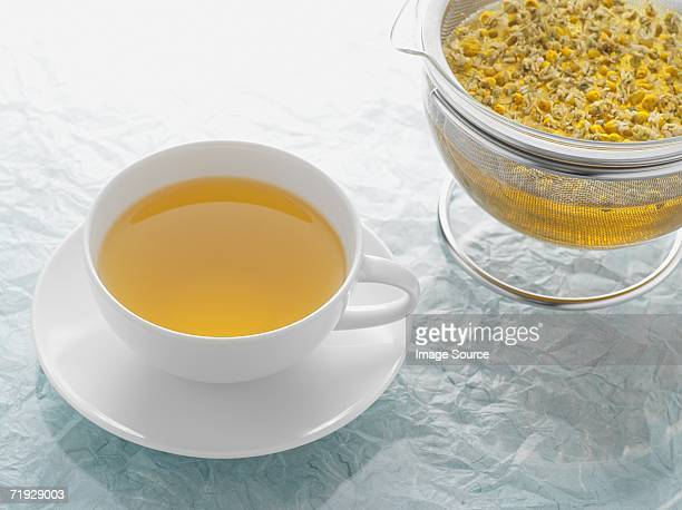 chamomile tea - chamomile tea stock photos and pictures