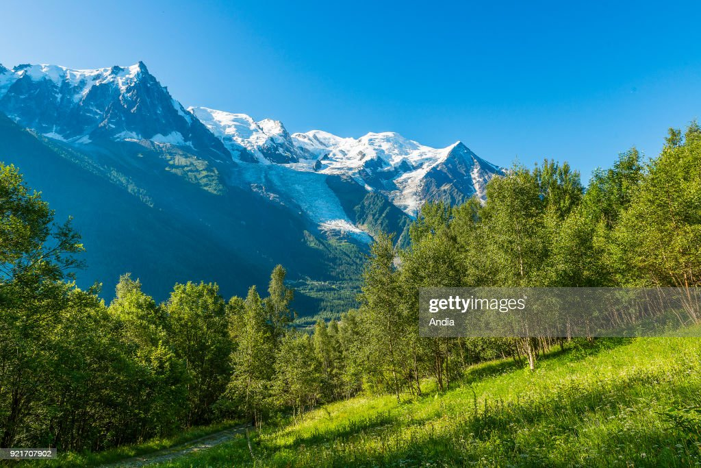 Chamonix-Mont-Blanc (Upper Savoy, French Alps, eastern France): landscape of the Chamonix Valley with glaciers and snow-capped mountains viewed from Le Petit Balcon Sud.