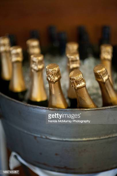 Champage bottles in champagne bowl