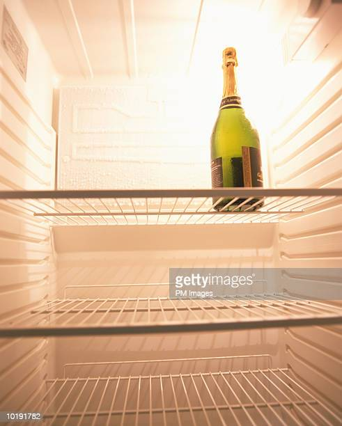 Champagne bottle in empty refrigerator