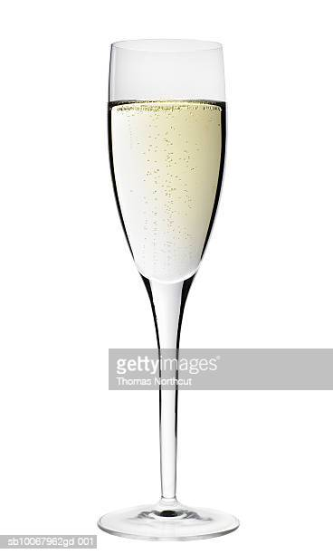 Champagne flute on white background