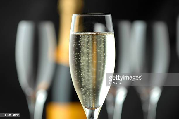 Champagne Flutes and Bottle on Black