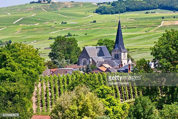 Champagne, Village of Rilly la Montagne