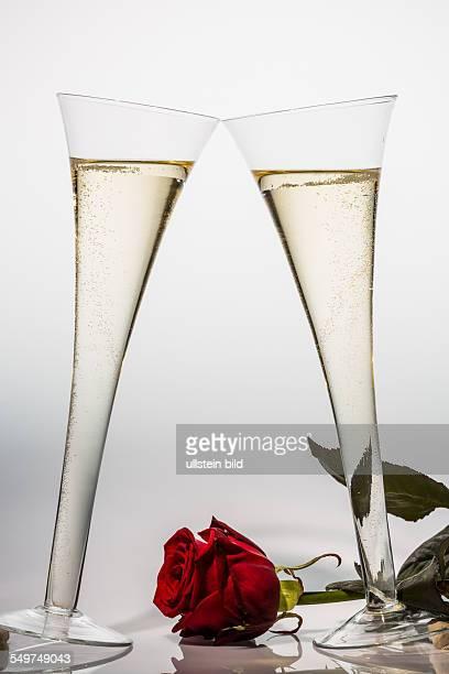 Champagner oder Sekt in einem Champagnerglas mit roter Rose. Symbolfoto für Feiern, Hochzeitstag, Valentinstag, Geburtstag.