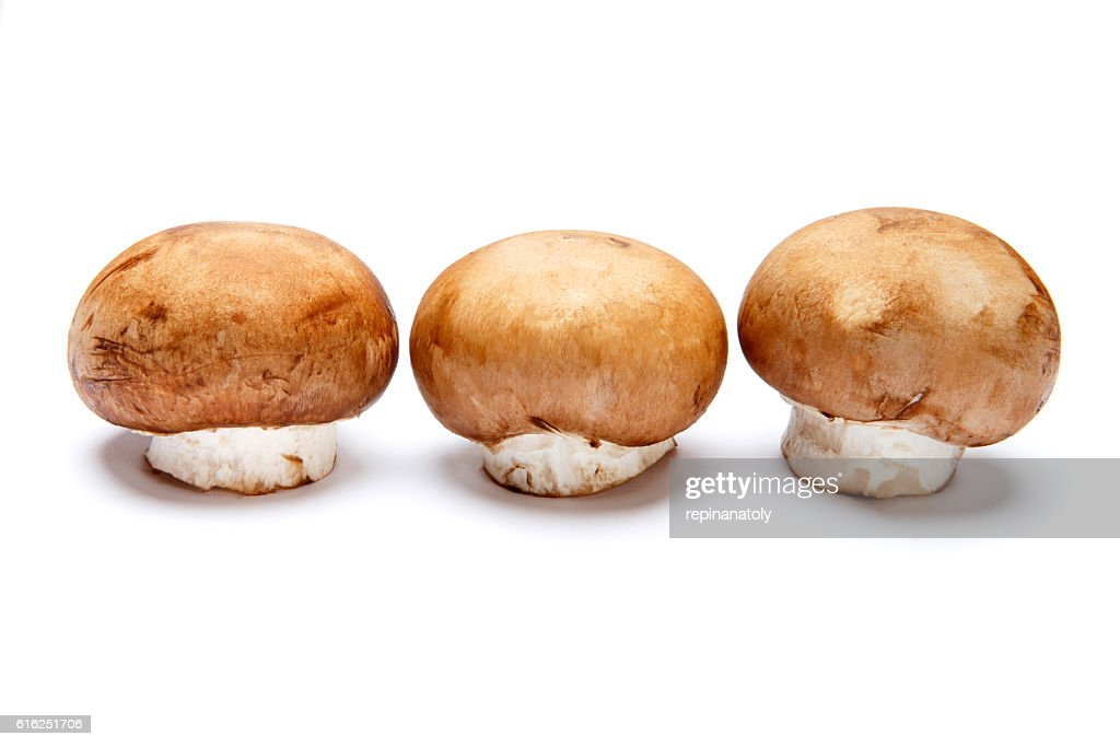 champignon mushroom isolated on white : Stock Photo