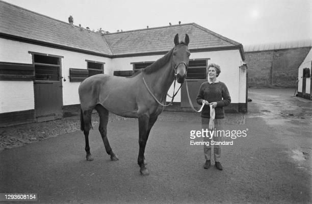 Champion Irish thoroughbred racehorse Arkle , UK, February 1968.