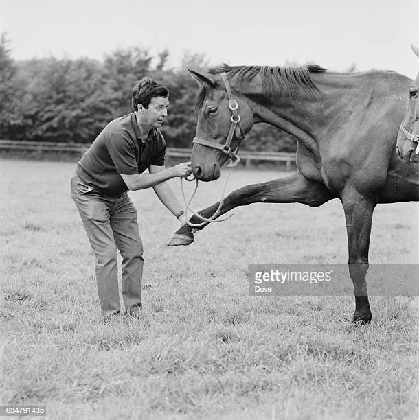 Champion racehorse Persian War with writer Dick Francis , UK, 28th June 1970.