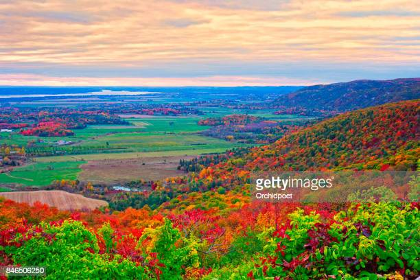 champlain lookout in gatineau park - ottawa stock pictures, royalty-free photos & images