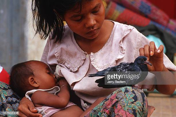Chan Heit nurses her baby Sey Lek who is less than a year old as she pets an injured pigeon She has three kids and lives on the streets in a small...