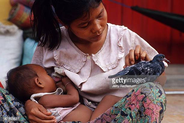 Chan Heit nurses her baby Sey Lek who is less than a year old as she strokes an injured pigeon She has three kids and lives on the streets in a small...