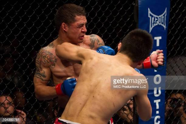 Chan Sung Jung AKA The Korean Zombie punches Leonard Garcia at WEC 48 Aldo vs Faber on April 24 2010 in Sacramento California
