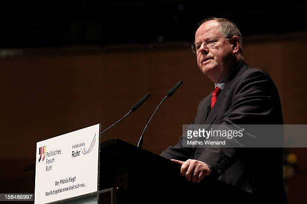 Chancellor candidate of the German Social Democrats Peer Steinbrueck attends a podium discussion at the Ruhr Initiative Circle congress on December...