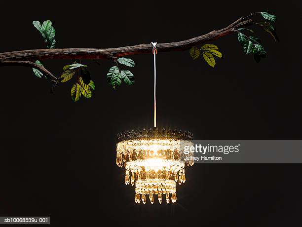 Chandelier Stock Photos and Pictures | Getty Images