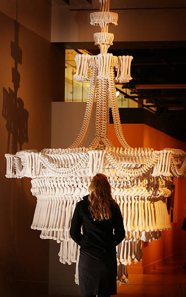 Press preview of death a self portrait exhibition at the wellcome a chandelier made from plaster casts of bones by artist jodie carey is displayed at the mozeypictures Gallery