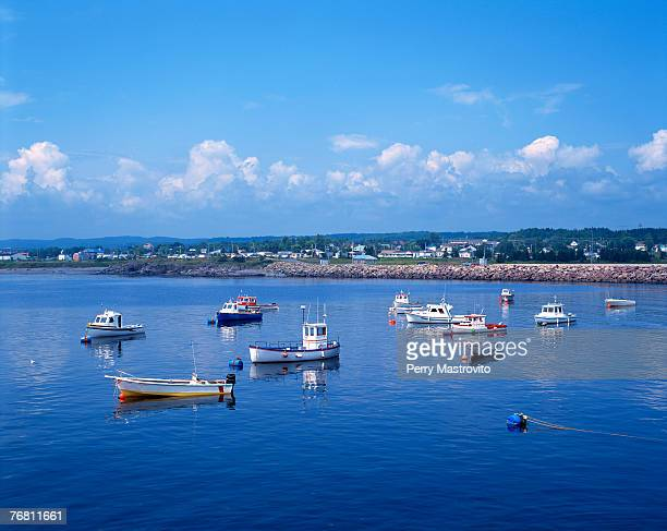 chandler fishing harbour, gaspesie, quebec, canada - gaspe peninsula stock pictures, royalty-free photos & images