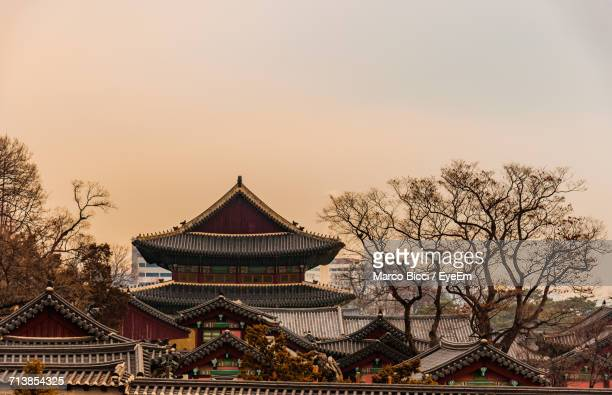 Changdeokgung Palace And Bare Trees Against Clear Sky