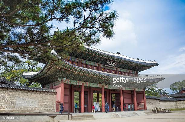 changdeokgung palace entrance, seoul, korea. - vsojoy stock pictures, royalty-free photos & images