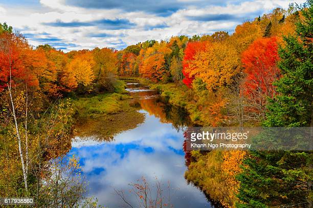 changing colours - autumn 2016 - moncton stock photos and pictures