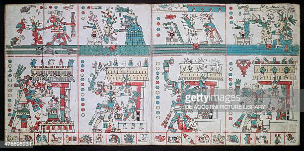 Changing fortunes in growing maize page from the Codex FejervaryMayer manuscript Aztec civilisation Liverpool Merseyside Maritime Museum