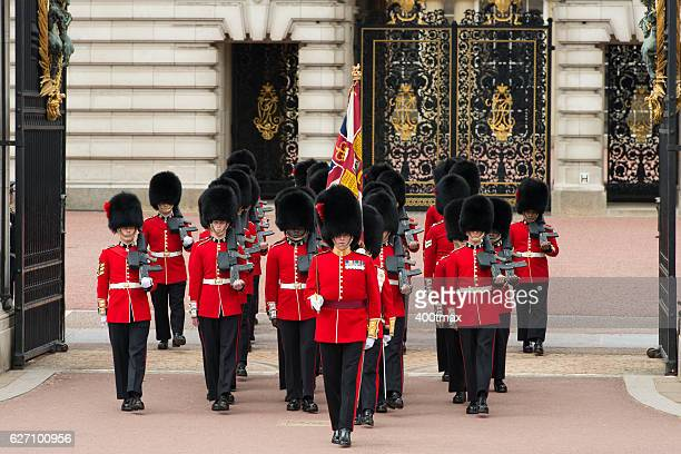 changing of the guard - honor guard stock pictures, royalty-free photos & images