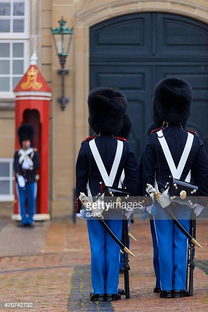 changing of the guards at amalienborg palace in copenhagen - honor guard stock pictures, royalty-free photos & images