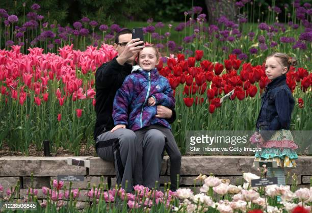 Chanhassen, MN May 22: Stephen Soderstrom took a selfie with his daughter Hailey surrounded by tulips Friday morning. Hailey's cousin Cora Mallett ....
