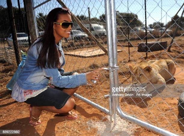 Chantelle Tagoe poses with a lion during a visit to the Cheetah Experience in Bloemfontein South Africa