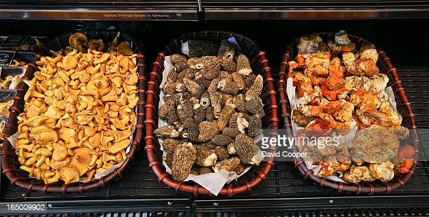 LR Chanterelle Morel and Lobster three types of exotic mushrooms for sale at Longo's in Leaside August 21 2012