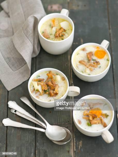 chanterelle mushroom soup with potatoes and cream - rua fotografías e imágenes de stock