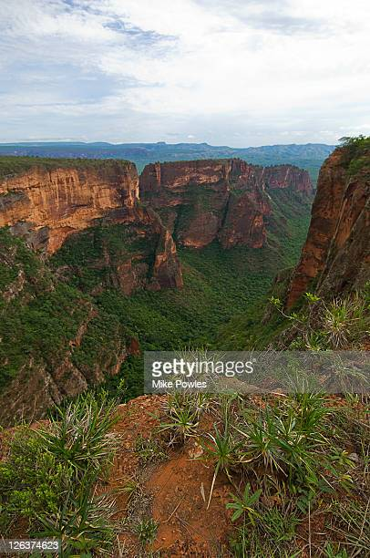 chapada dos guimaraes, brazil - mato grosso state stock pictures, royalty-free photos & images