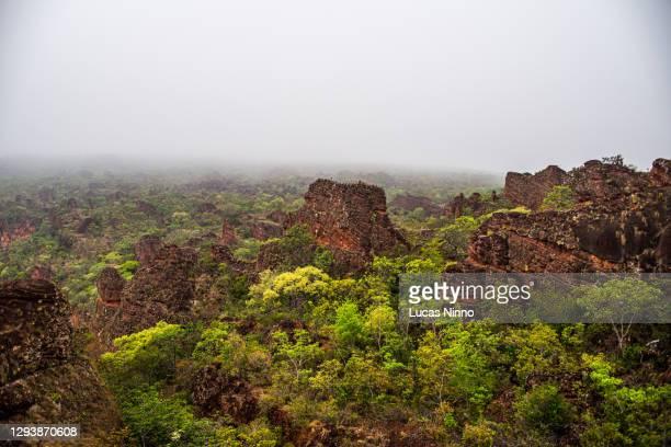 chapada dos guimarães sandstone rock formations - セラード ストックフォトと画像