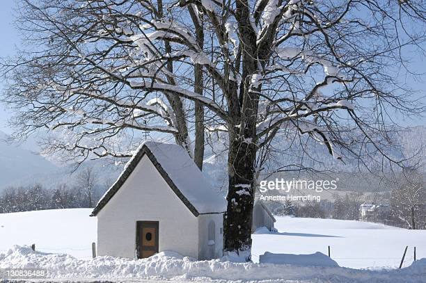 chapel beside large tree at the roadside - annette haven foto e immagini stock