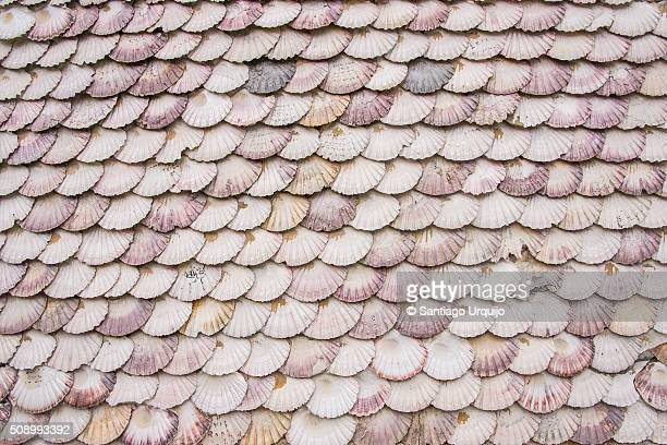 chapel covered in scallop shells - cappella foto e immagini stock