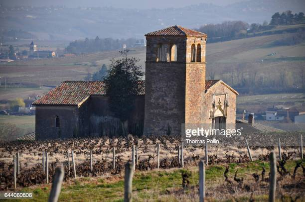chapel in the beaujolais vineyard - auvergne rhône alpes stock photos and pictures