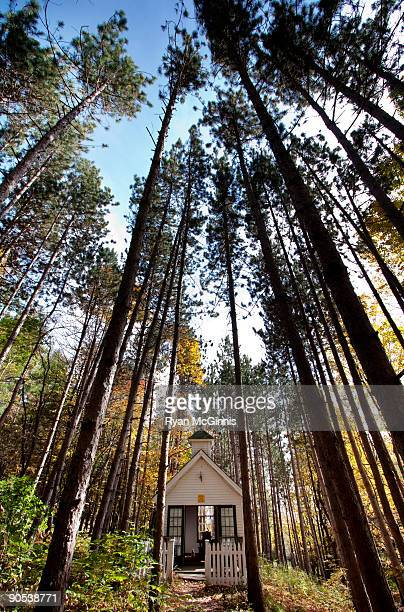 chapel in the forest - ryan mcginnis stock photos and pictures