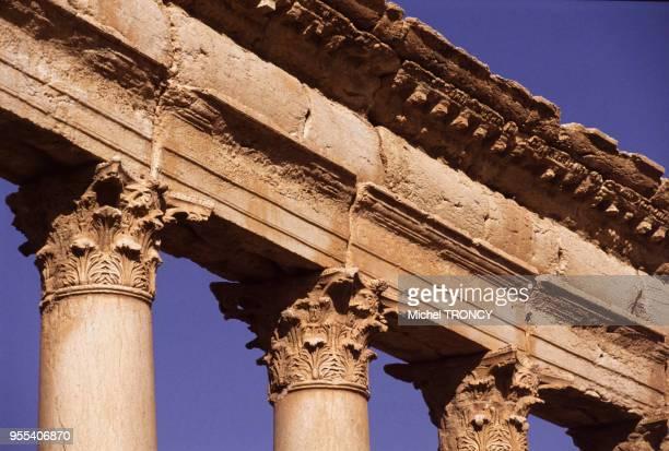 Chapiteaux corinthiens de la colonnade du decumanus de la cité antique de Palmyre Syrie