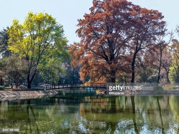 Chapultepec Lake in Mexico City