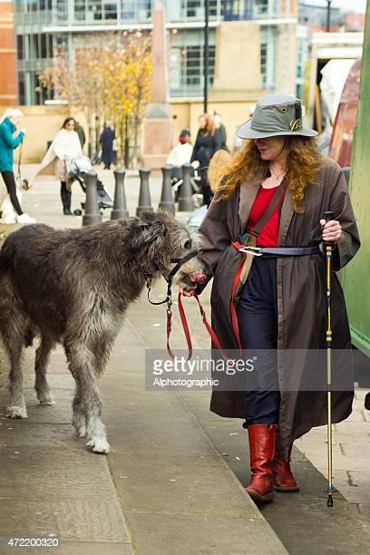 zeichen auf der newcastle quayside - irischer wolfshund stock-fotos und bilder