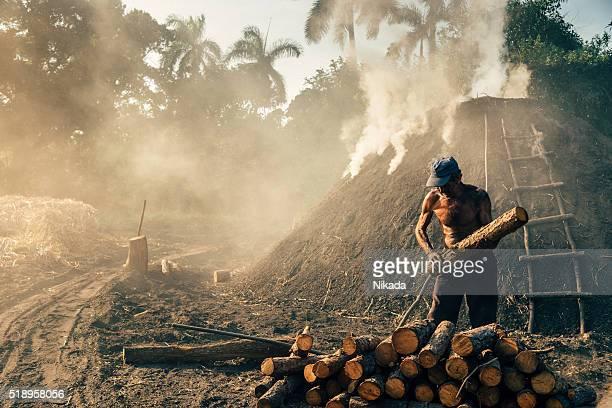 Charbon produire à Cuba, travailleur avec tronc d'arbre