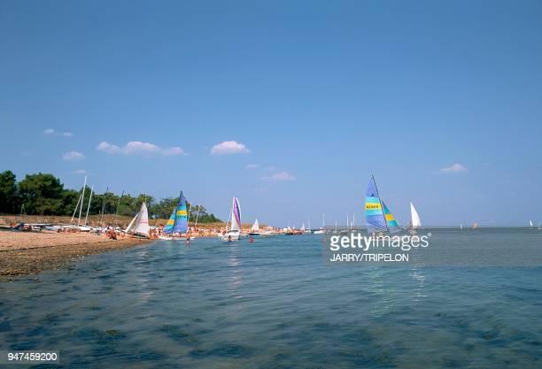 Ile de Ré plage de TrousseChemise Les Portes CharenteMaritime Ile de Ré plage de TrousseChemise Les Portes