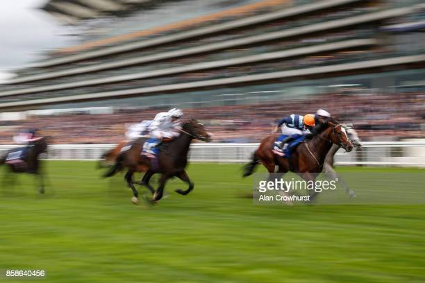 Charles Bishop riding Accidental Agent win The Totescoop6 Challenge Cup at Ascot racecourse on October 7 2017 in Ascot United Kingdom