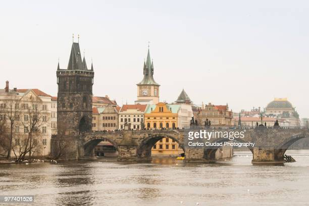 charles bridge and vltava river of prague, czech republic, europe - vltava river stock photos and pictures